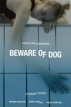 Beware of Dog-hd