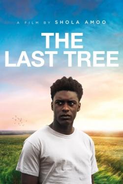 The Last Tree-hd