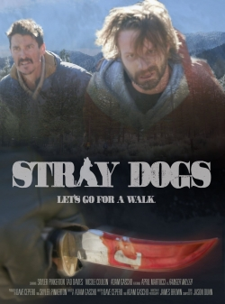 Stray Dogs-hd