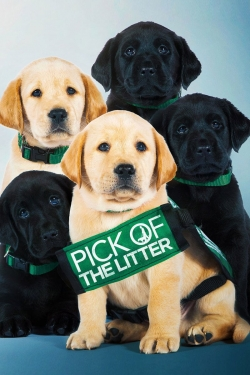 Pick of the Litter-hd